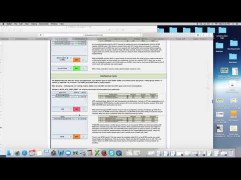 Folate Pathway Review - Dr. Kevin Conners