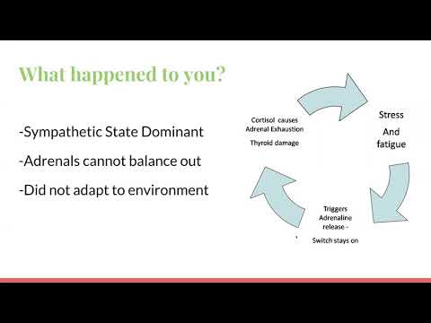 Dr. Kevin Conners - Ashley on Adaptogens