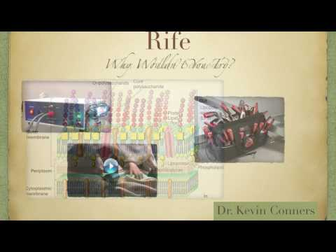 Rife Q & A - Dr. Kevin Conners