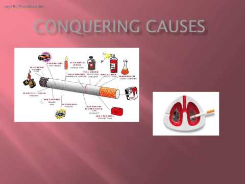 Cancer Class 4 - conquering CAUSES Dr. Kevin Conners