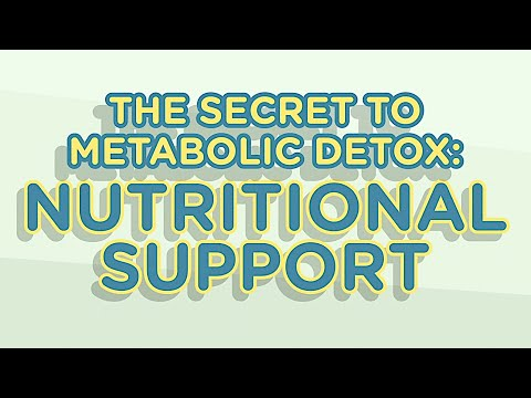The Secret To Metabolic Detox: Nutritional Support & Phases