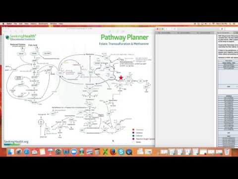 Genetic Detox - SOD/Catalase - Dr. Kevin Conners
