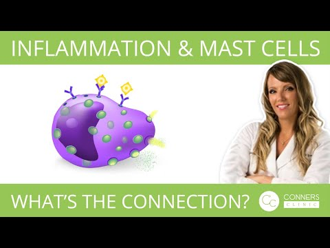 How Does Inflammation Tie Into Mast Cells ?   Conners Clinic