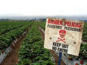 Pesticides Killing our BRAINS
