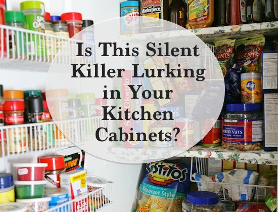Food Additives are Silent Killers
