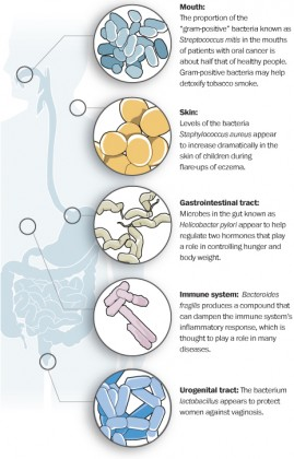 w-Microbes-graphicstory-269x420