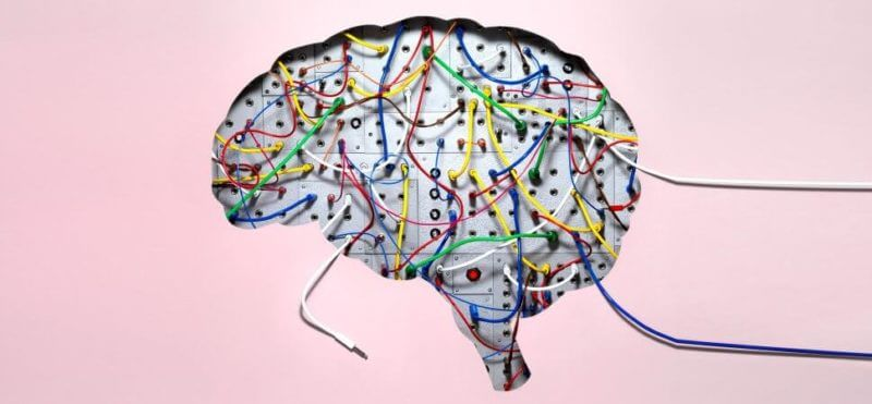 The Brain is Stimulus-Dependent 1