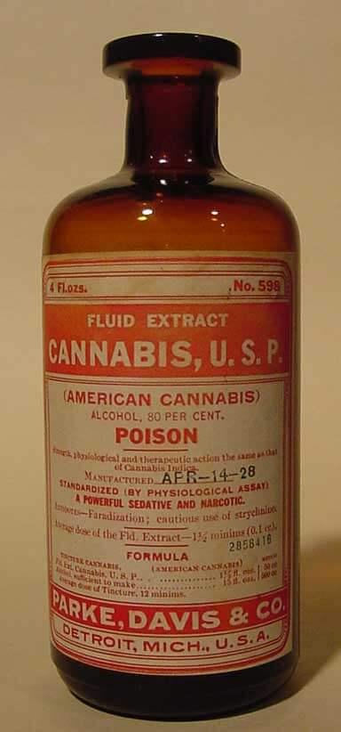 cannabis-merck-manual-1899