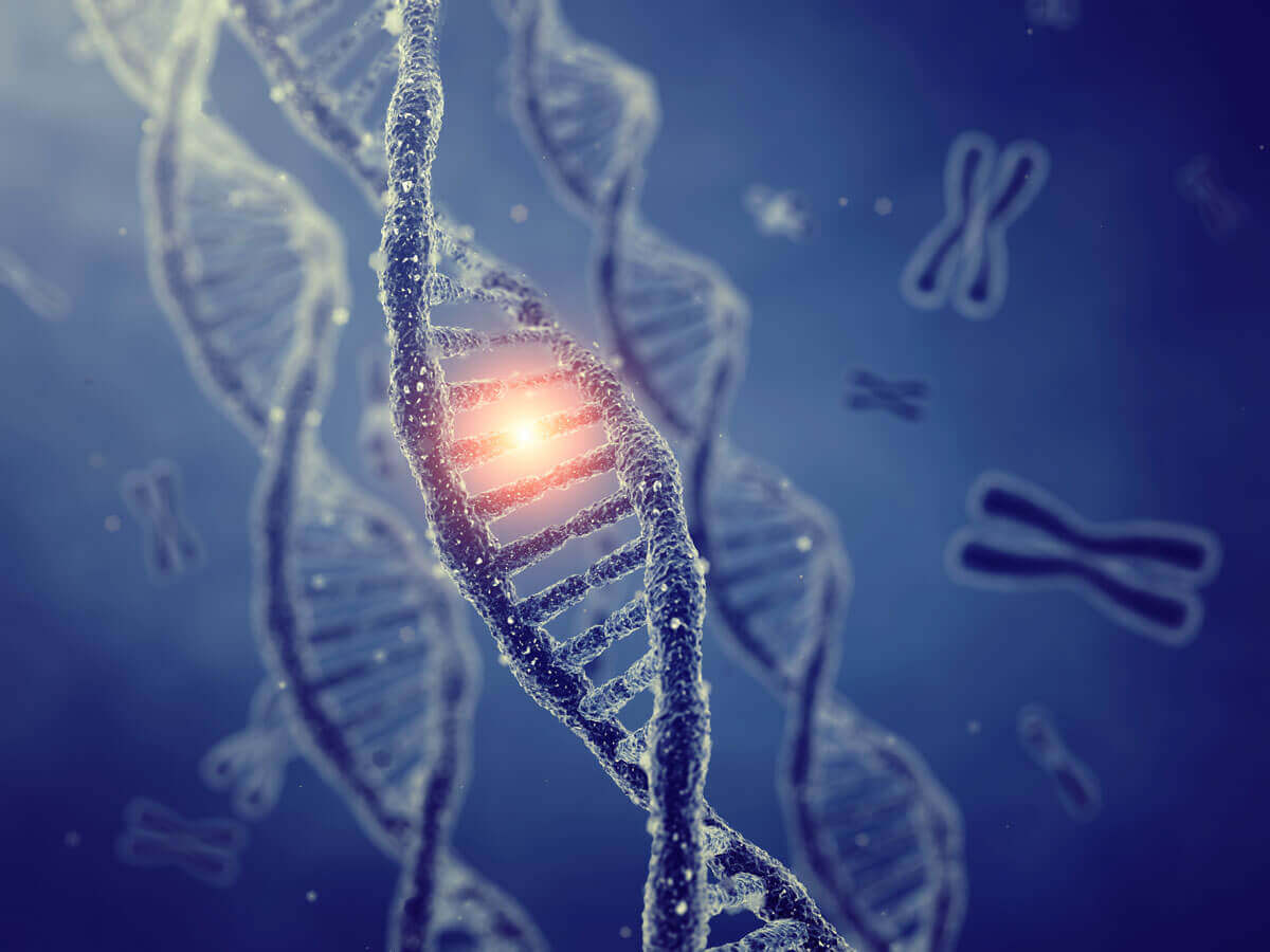 genetic-defects-dna-cancer-conners-clinic